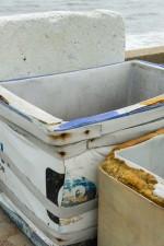 GHarhoff_Paintbox-11 thumbnail
